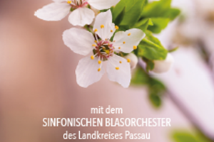 20.04.2018 icon Einladung LR.PNG